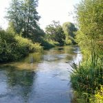 River Test south of Whitchurch