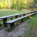 Longest picnic bench in England made from a single piece of wood